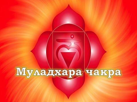razdvinula-nozhki-dlya-kuni-porno