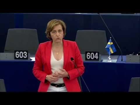 Beatrix von Storch (AfD) - Debatte zum EU-Budget bis 2025 - Sitzung des EU-Parlaments am 04.07.2017