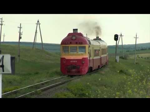 Дизель-поезд Д1-770 на о.п. Скумпиа / D1-770 at Scumpia stop