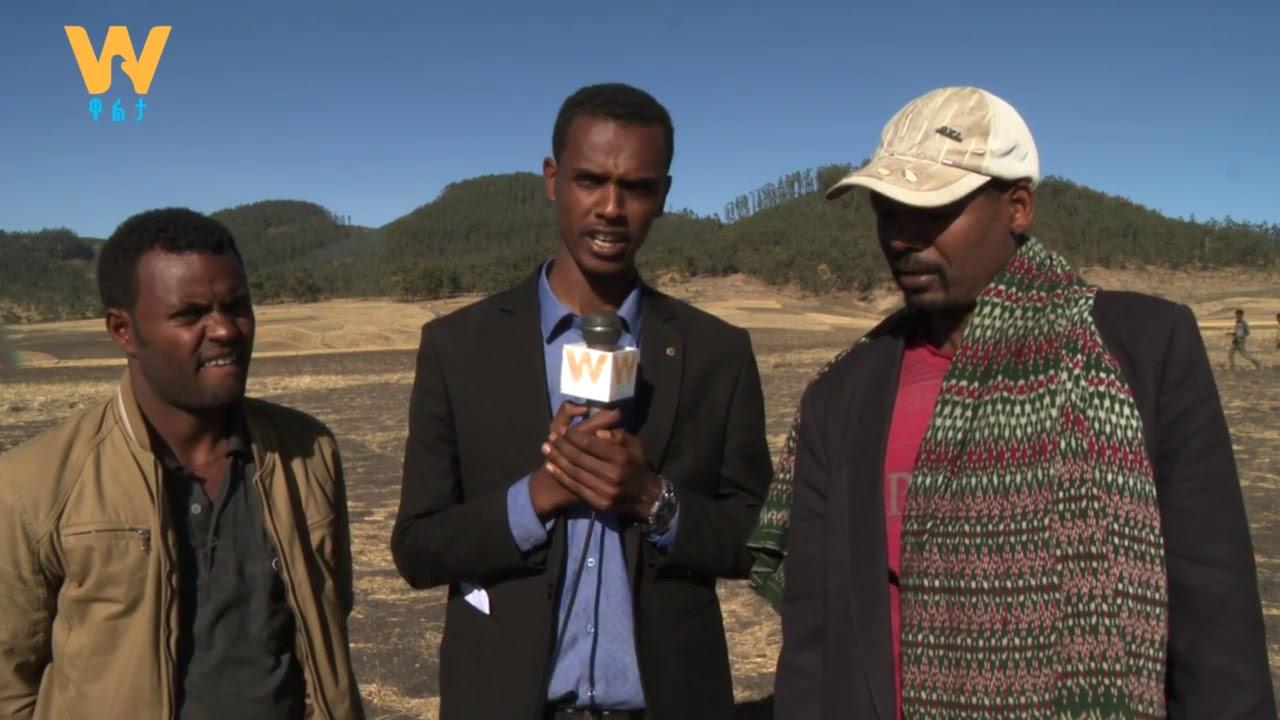 Ethiopian Airlines crashed route to Nairobi Eye witness talk to Walta TV