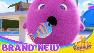 써니 버니   SUNNY BUNNIES FISHY, FISHY, FISHY, FISH!     어린이를위한 재미있는 만화   WildBrain