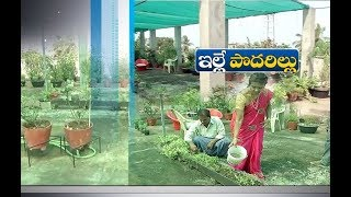Living Home Made as Farm House | with Roof Top Farming | by These Couple | at Guntur's Amruthalur