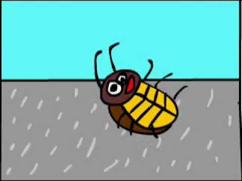 я весёлый таракан
