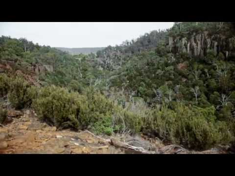 BHP Billiton's Five Rivers Conservation Project
