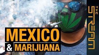 Can legal marijuana stop Mexico's drug cartels? | The Stream