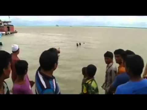 Bangladesh Ferry Capsizes on River Padma near Dhaka | Bangladesh Ferry Sinks with up to 200 on B
