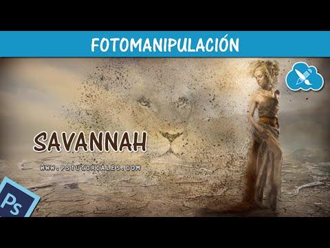 Savannah Photoshop Tutorial