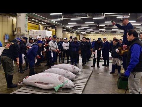 Tokyo's Tsukiji Sells Bluefin Tuna for $117,000