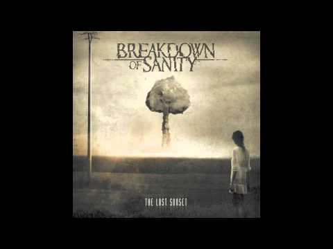 Breakdown Of Sanity - Break