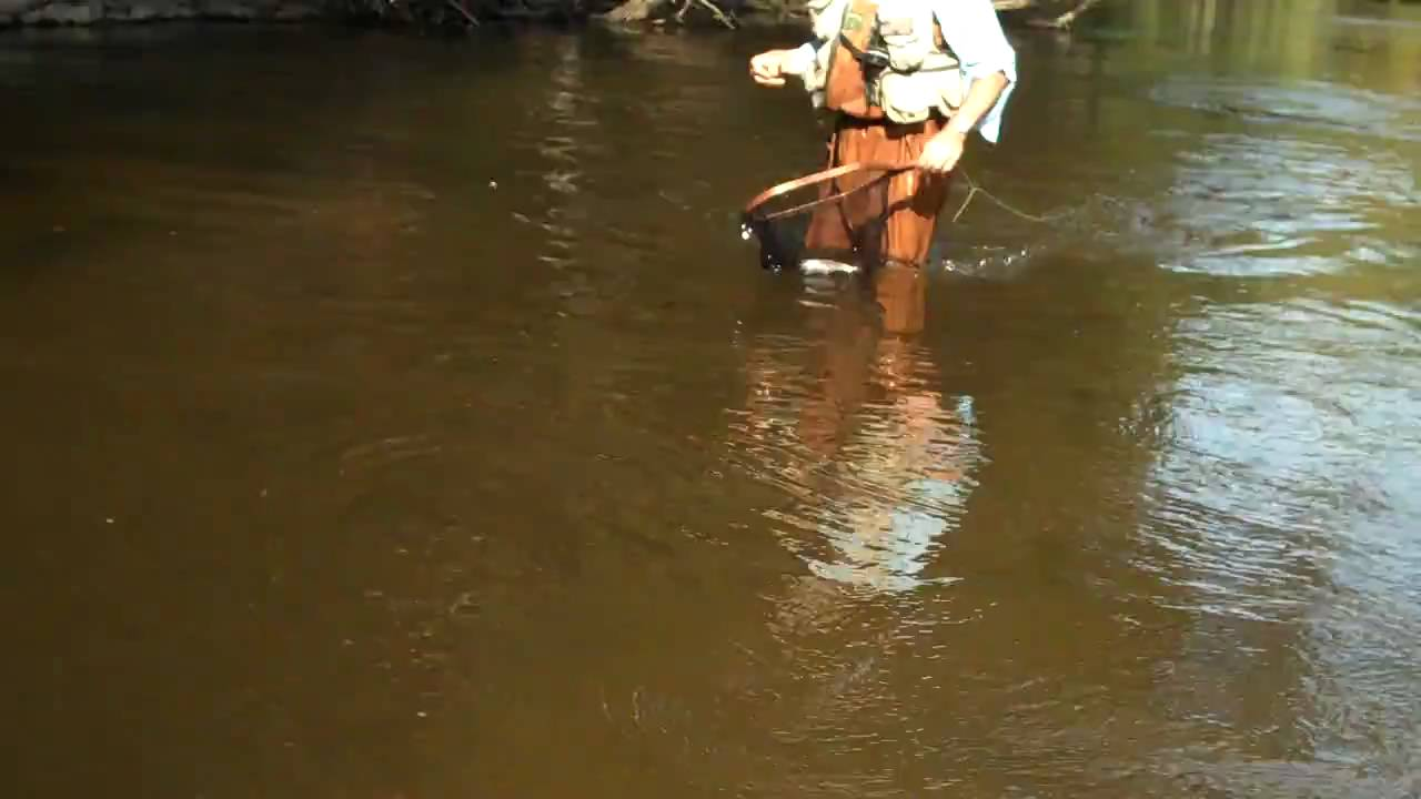 Northern michigan betsie river trout fly fishing youtube for Betsie river fishing report