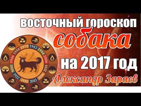 рынке спортивной скорпион собака гороскоп на 2017 полипропилена