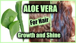 HOW TO APPLY ALOE VERA FOR HAIR GROWTH, NATURAL SHINE, STOP HAIR LOSS │ USE ALOE VERA AS HAIR SERUM