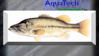 AquaTech Environmental, Inc. - Pond and Lake Management