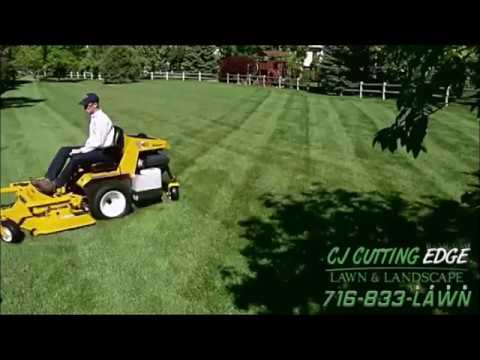 Lawn care & Landscaping Buffalo NY