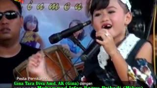 REBUTAN LANANG - ALYSA   ALYSA NADA