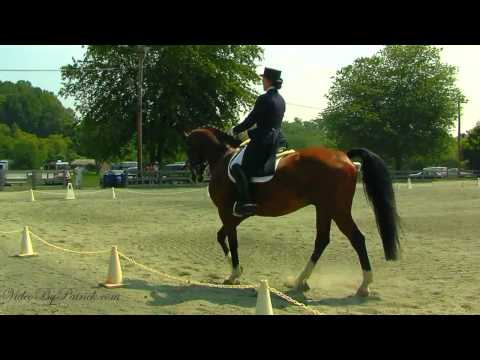 Janna Dyer on Medaillon, FEI GP, Heavenly Waters Dressage, 6/20/2010 Video