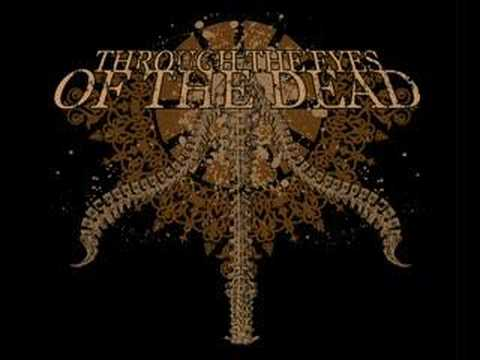 Through The Eyes Of The Dead - To Take Comfort