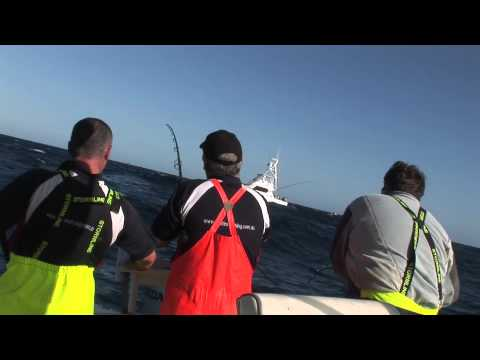 Reel Time Fishing charters bermagui portland tuna