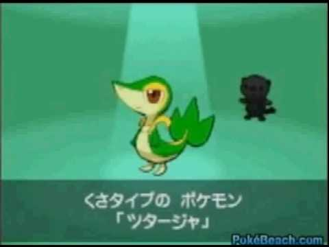 pokemon black and white beggining-pokemonbeach.com(1) Video