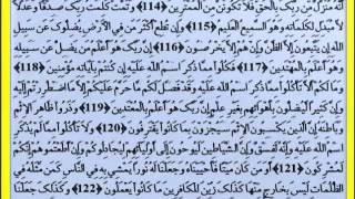 06 Surah Al An'am Abdulwadood Haneef Musshaf