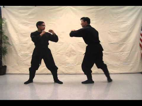 Ninjutsu 忍術 tutorial video (Insert punch) - video #197 Image 1