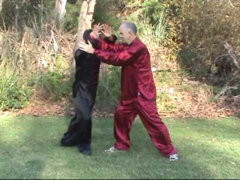 Practical Tai Chi Taiji Push Hands 41 Techniques Image 1
