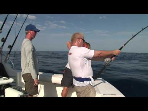 Marlin Fishing Tournament Cabo San Lucas in High Definition