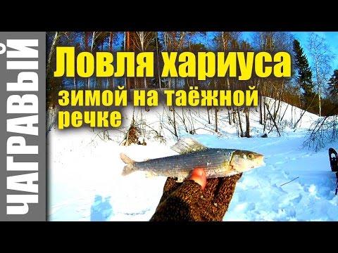 охота на медведя и рыбалка на хариуса
