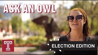 Ask an Owl: Election Edition