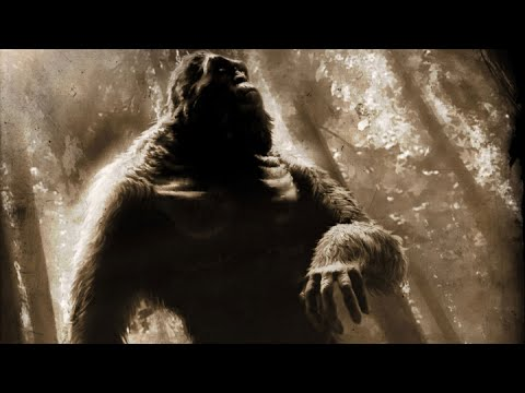 "Bigfoot Sightings Of Vietnam ""Strange Encounters With Rock Apes"""