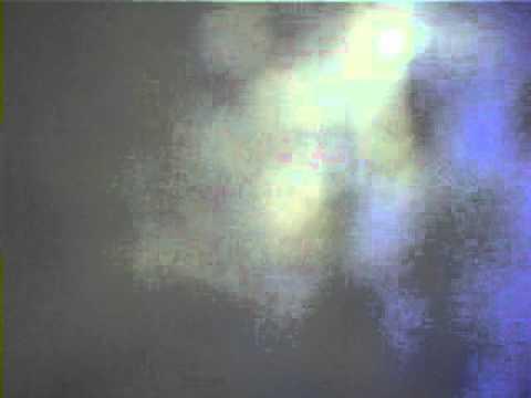 Samambaia Teste Video video