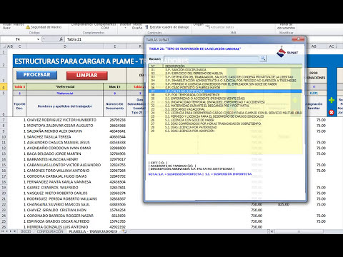 ESTRUCTURAS PARA IMPORTAR A PLAME 2013 DESDE EXCEL