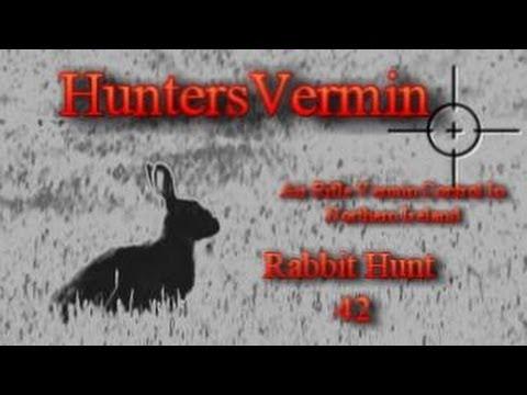 Air Rifle Hunting. Rabbit Hunt 42. May 2014