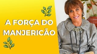 A Força do MANJERICÃO por Márcia Fernandes