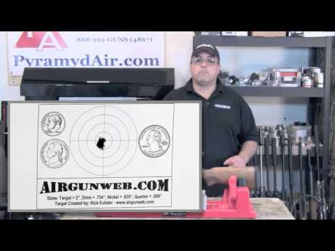 Hatsan Mod 95 in .22 caliber - Airgun Review / Product Review