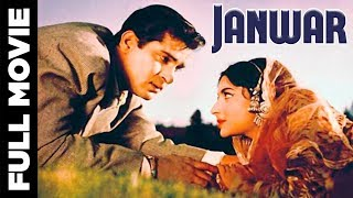Janwar (1965) Superhit Bollywood Movie | जानवर | Shammi Kapoor, Prithviraj Kapoor