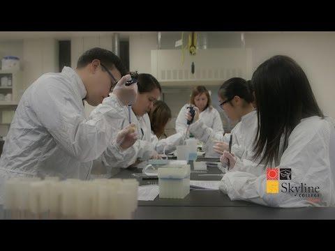 Skyline College 2014 President's Innovation Fund