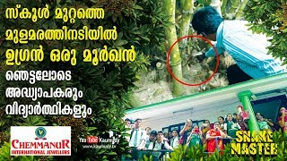 Shocked Teachers and Students see a Cobra in school | Vava Suresh | EP 402