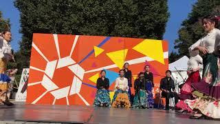 【東京大学フラメンコ舞踏団】2018駒場祭 ファンダンゴFandango