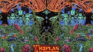 ♫ Hitech Psytrance ♫ YATZEE ♫ Triplag - Psychedelic Transcendence Anniversary III ♫