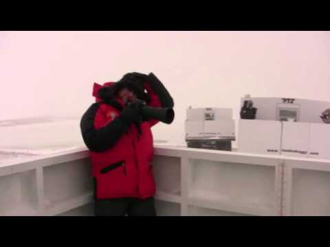 a very windy day at the wapusk youtube