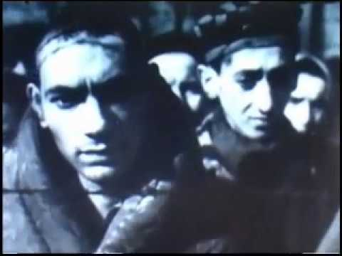Auschwitz Concentration Camp Video