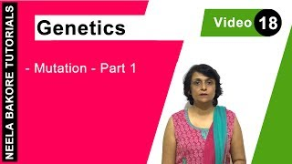 Genetics - Mutation Part 1