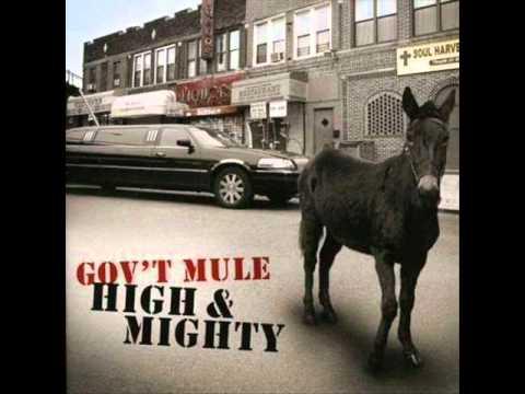 Govt Mule - Nothing Again
