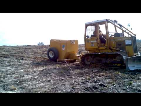Pine tree planting with V blade dozers - Clayco Forestry