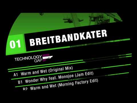 Breitbandkater - Warm and Wett (Original Mix) Technology Gap 001 http://technologygap.bandcamp.com.