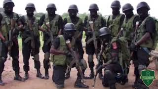 Tribute to the Nigerian armed forces