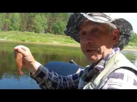 как ловить щуку на платном пруду