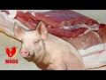 Разделка свинины для засолки