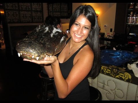 Kamikaze Kitchen Episode 3 - Chef Jet Tila prepares an alligator head